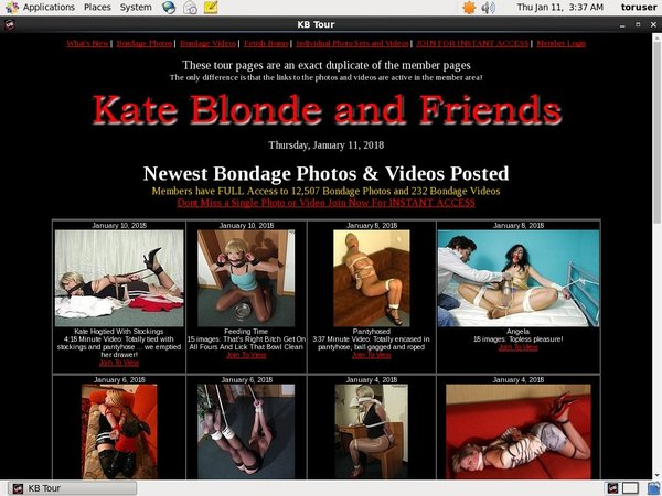 Kate Blonde And Friends Gallery