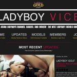 Ladyboyvice.com Accounts Daily