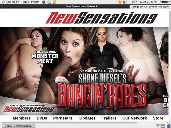 Shane Diesel Free Movies